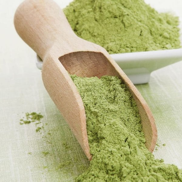 Raw organic superfood kale powder