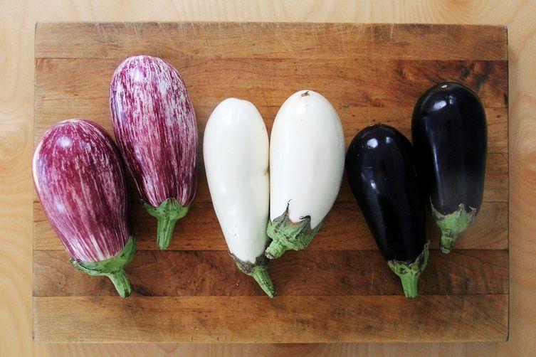 eggplants ผักลดไขมันหน้าท้อง