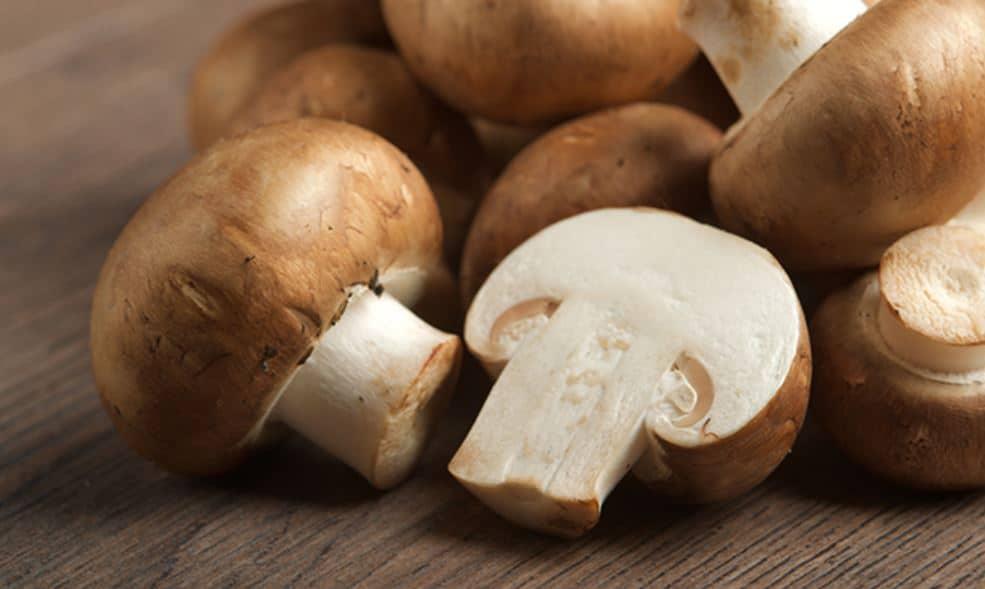mushroom เห็ด อาหารมื้อเย็นไม่อ้วน