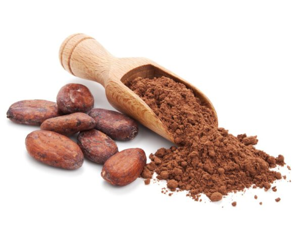 ผงคาเคา โกโก้ออร์แกนิค คีโต สินค้าเพื่อสุขภาพออนไลน์ ไม่ผสมน้ำตาล นมผง สารเคมี เฮลธ์แพลตซ์ Healthplatz