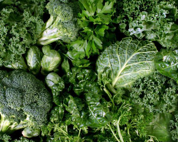 อาหาร ลดคอเลสเตอรอล ผักเคล Kale ผงsuperfood ออแกนิค ออร์แกนิค Healthplatz