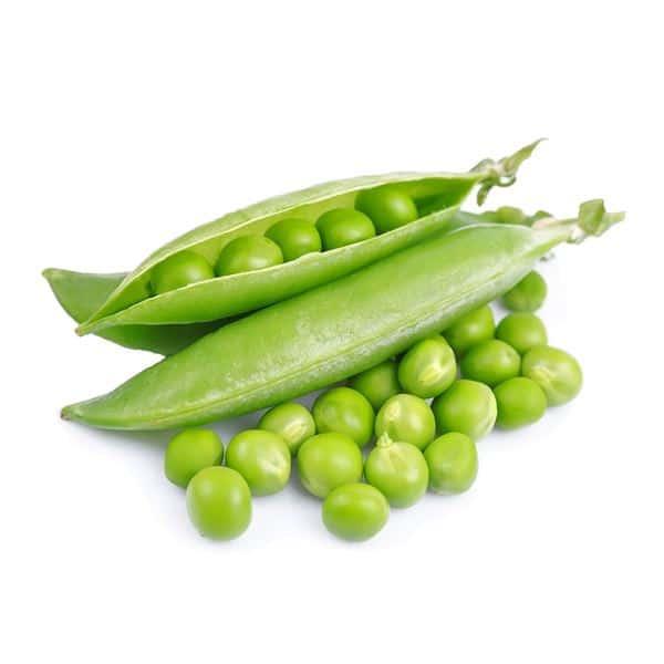 pea protein ประโยชน์ พีโปรตีนยี่ห้อไหนดี TREASURE_organic PeaProtein-healthplatz